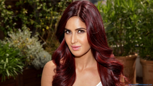 Makeup, Eye Makeup, Face Makeup, Pink Lips, Brunette, Women, Girl, Shy, Pretty, Innocent, Cute, Beautiful, Celebrity, Model, Actress, Bollywood, Bollywood Actress, Kaif, Katrina, Katrina Kaif,  Katrina Kaif Wallpapers, Katrina Kaif In Bare Shoulder Dress, Katrian Kaif In Off Shoulder Dress, Katrina Kaif In Sleeveless Dress, Katrina Kaif In Deep Neck Dress, Katrina Kaif Makeup, Katrina kaif In Indoor Garden, Katrina Kaif Red Hair,Katrina Kaif Face Closeup, Style, Fashion, Wear, Dress, Tunic, Western, Bare, Bare Shoulder, Off Shoulder, Deep Neck, Sleeveless Dress, Bare Shoulder Dress, Off Shoulder Dress, Deep Neck Dress, Face Closeup, Long Hair, Open Hair, Red Hair, Makeup, Eye Makeup, Face Makeup, Pink Lips, Brunette, Women, Girl, Shy, Pretty, Innocent, Cute, Beautiful, Celebrity, Model, Actress, Bollywood, Bollywood Actress, Kaif, Katrina, Katrina Kaif,  Katrina Kaif Wallpapers, Katrina Kaif In Bare Shoulder Dress, Katrian Kaif In Off Shoulder Dress, Katrina Kaif In Sleeveless Dress, Katrina Kaif In Deep Neck Dress, Katrina Kaif Makeup, Katrina kaif In Indoor Garden, Katrina Kaif Red Hair,Katrina Kaif Face Closeup, Photo Shoot, Indoor, Indoor Garden, Style, Fashion, Wear, Dress, Tunic, Western, Bare, Bare Shoulder, Off Shoulder, Deep Neck, Sleeveless Dress, Bare Shoulder Dress, Off Shoulder Dress, Deep Neck Dress, Face Closeup, Red Hair, Open Hair, Long Hair, DAW699, Download, Wallpapers, HD, Latest, Actress Wallpapers, Photo Shoot, Indoor Garden, Indoor