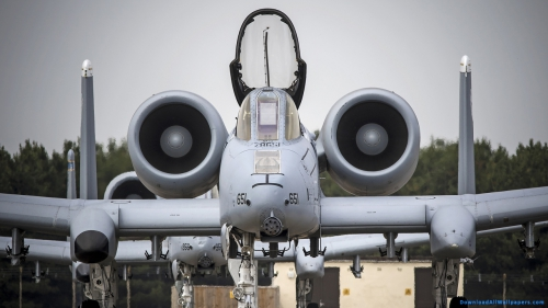 Thunderbolt, A-10, A-10 Thunderbolt, A-10 Thunderbolt Aircraft, A-10 Thunderbolt On Runway, A-10 Thunderbolt Military Aircraft On Runway,Front View Of A-10 Thunderbolt On Runway, Aviation, Transport, Vehicle, Runway, Aircraft, Bomber, Plane, Jet, Fighter, Military, USAF, Air Force, US, US Air Force, Front View, Aircraft On Runway, Thunderbolt, A-10, A-10 Thunderbolt, A-10 Thunderbolt Aircraft, A-10 Thunderbolt On Runway, A-10 Thunderbolt Military Aircraft On Runway,Front View Of A-10 Thunderbolt On Runway, DAW727, Download, Wallpapers, HD, Latest, Aviation Wallpapers, Aviation, Transport, Vehicle, Runway, Aircraft, Bomber, Plane, Jet, Fighter, Military, USAF, Air Force, US, US Air Force, Front View, Aircraft On Runway