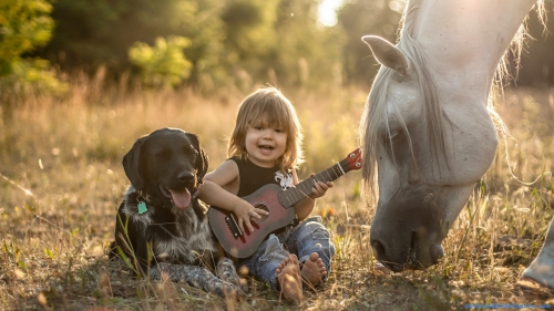 White Horse, Animal, Pet, Pet Animal, Children, Toddler, Kid, Child, Shadow, Sunlight, Daylight, Sunny, Long Hair, Outdoor, Grass, Sitting, Horse, Dog, Singing, Guitar, Boy, Little Boy, Horse In Forest, God In Forest, Little Boy In Forest, Little Boy Sitting Down In Grass, Little Boy With Dog And Horse, Little Boy With Guitar, Little Boy Playing Guitar, Little Boy Playing Guitar In Outdoor, Little Boy Playing Guitar With Dog And Horse,Little Boy With Dog And Horse In Forest, DAW776, Download, Wallpapers, HD, Latest, Horse Wallpapers, Dog Wallpapers, Animal Wallpapers, Little Boy Wallpapers, Baby Wallpapers, Black Dog, White Horse, Animal, Pet, Pet Animal, Children, Toddler, Kid, Child, Shadow, Sunlight, Daylight, Sunny, Long Hair, Outdoor, Grass, Sitting, Horse, Dog, Singing, Guitar, Boy, Little Boy, Horse In Forest, God In Forest, Little Boy In Forest, Little Boy Sitting Down In Grass, Little Boy With Dog And Horse, Little Boy With Guitar, Little Boy Playing Guitar, Little Boy Playing Guitar In Outdoor, Black Dog,Little Boy With Dog And Horse In Forest, Little Boy Playing Guitar With Dog And Horse