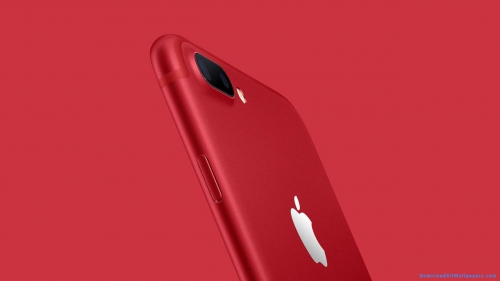 Apple iPhone 7 Mobile,  Apple iPhone 7 Mobile Special Edition,  Apple iPhone 7,  iPhone 7,  Red Color,  Back View,  Special Edition,  Apple iPhone,  iPhone,  Mobile,  Phone,  IOS,  Device,  Gadgets,  Technology,  Red Background,  Gadgets Wallpapers,  iPhone 7 Wallpapers,  iPhone Wallpapers,  Latest,  HD,  Wallpapers,  Download,  DAW187
